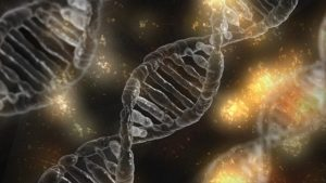 Damaged DNA caused by toxins