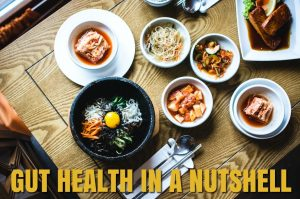 Gut health in a nutshell: Science-based tips for a happy gut